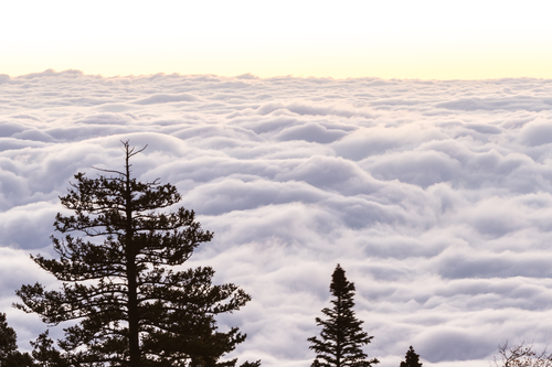sunrise above the clouds-sandia mountains in Albuquerque nm